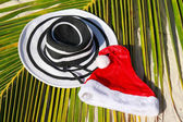 Santa hat and woman hat on palm leaf — Stockfoto