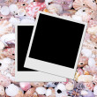 Photo frames on seashells background — Stock Photo