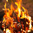 Closeup campfire in barbecue — Stock Photo