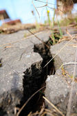 Cracked asphalt after earthquake — Stock Photo