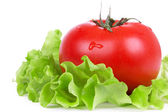 Tomato on green salad leaf — Stok fotoğraf