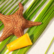 Starfish and sun protection tube on palm leaf — Stock Photo