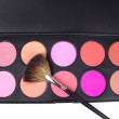 Professional make-up brush — Stock fotografie