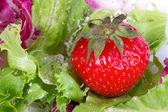 Fresh strawberry in salad — Stock Photo
