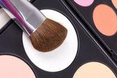 Make-up štětce na paletě červenat — Stock fotografie