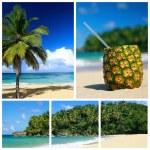 collage del Mar dei Caraibi — Foto Stock