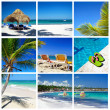 Royalty-Free Stock Photo: Caribbean collage