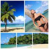 Caribisch strand collage met sexy vrouw — Stockfoto