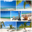 Chaise longues on tropical beach - Stockfoto