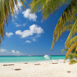Calm beach on caribbean sea - Stock Photo