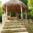 Arbour in tropical wood - Stock Photo