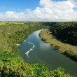Tropical river Chavon - Stockfoto