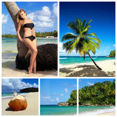 加勒比拼贴画 — 图库照片