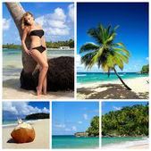 Karibik collage — Stockfoto