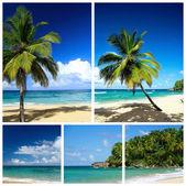 Karibské pláži koláž — Stock fotografie