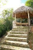 Prieel in tropisch hout — Stockfoto