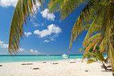 Calm beach on caribbean sea — Stock Photo