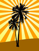 Silhouette of two palms — Foto Stock