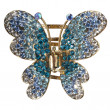 Jewelry butterfly - Stock Photo