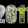 2011 new year — Stockfoto