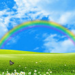 Rainbow over a green glade — Stock Photo