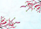Cherry branch with pink flowers — Stock Photo