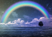 Rain and rainbow — Stock Photo