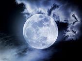 Nella notte della luna — Foto Stock