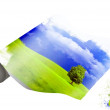 Roll of a paper with the nature image — Stock Photo