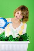 Girl watering flowers — Stock Photo