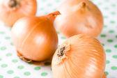 Ripe onions — Stock Photo
