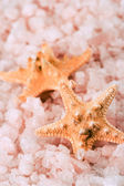 Two starfishes and sea salt — Stock Photo