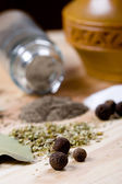 Spices: pepper, salt, bay leaves and herbs — Stock Photo