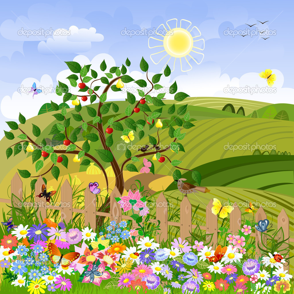 Rural landscape with fruit trees and a fence — Stock Vector #4044010