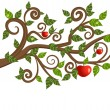 Tree branch from an apple - Stock Vector