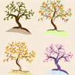 Trees seasons — Stock Vector