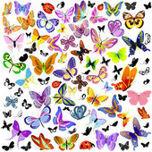 Set di coccinella e farfalla — Vettoriale Stock