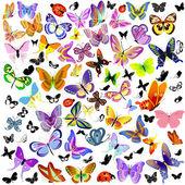 Set lieveheersbeestje en vlinder — Stockvector