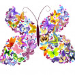 Royalty-Free Stock Vectorielle: Butterfly of butterflies