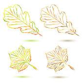 集秋天的树叶 — 图库矢量图片