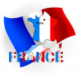 France map in the form of the French flag.Vector illustration — Stock Vector