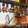 Many metal sacrificial bells hanging on chain and landing dove, - Foto Stock