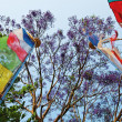 Colored prayerful flags in front of blue sky and tree branches, - Stock Photo