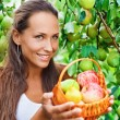 Beautiful lady in the garden with apples and pears in the crib — Stock Photo
