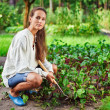 Foto Stock: Young womwith hoe working in garden bed