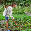 Young woman with hoe working in the garden bed - Stockfoto