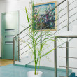 Part of modern hall interior with metal staircase in minimalism — Stock Photo