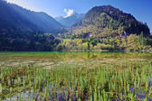 Mountain lake morning in Jiuzhaigou Valley, Sichuan, China — Stock Photo