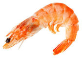Cooked shelled tiger shrimp — Stock Photo