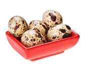 Some quail eggs in red square plate — Stock Photo